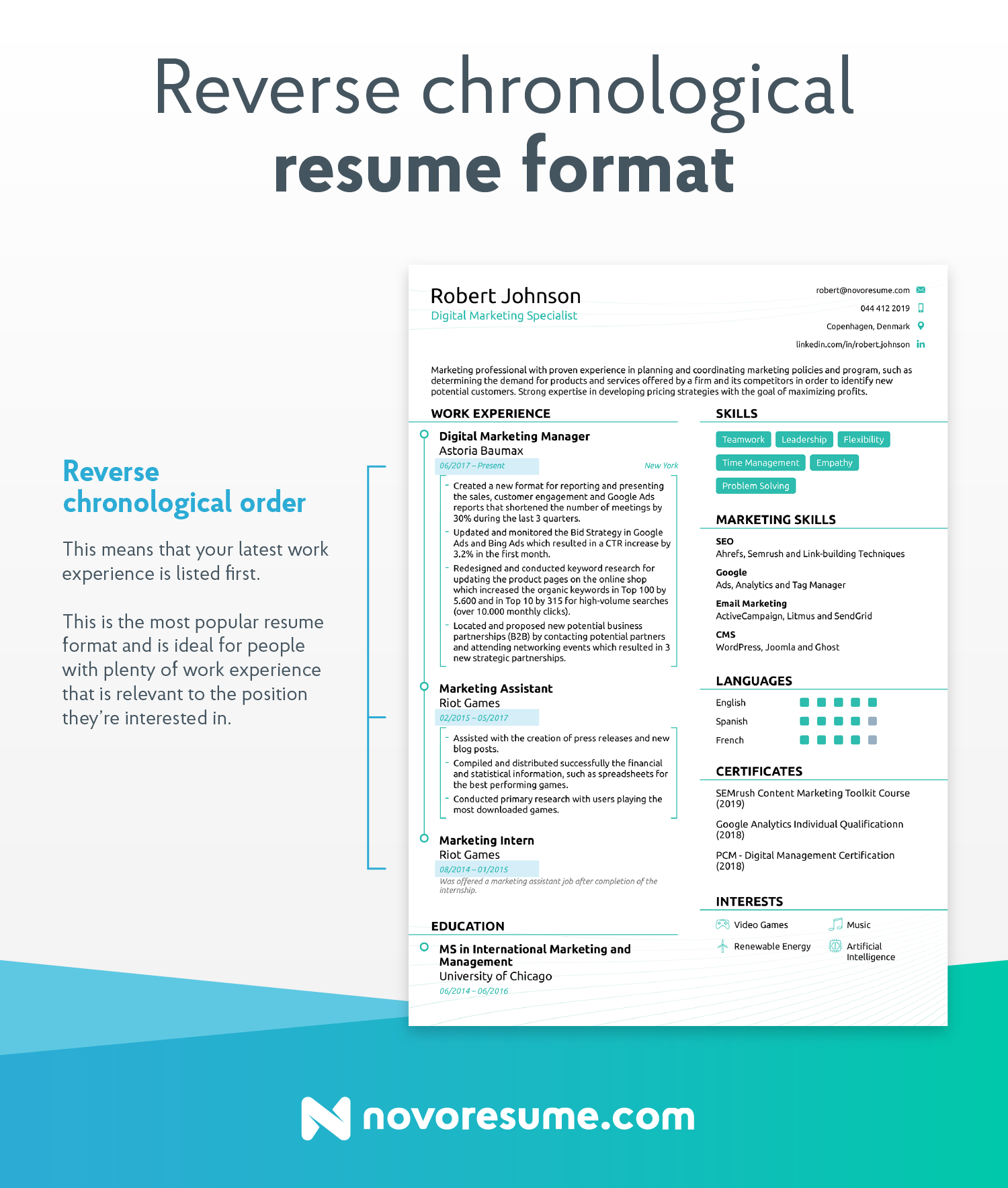 resume format for no experience resume