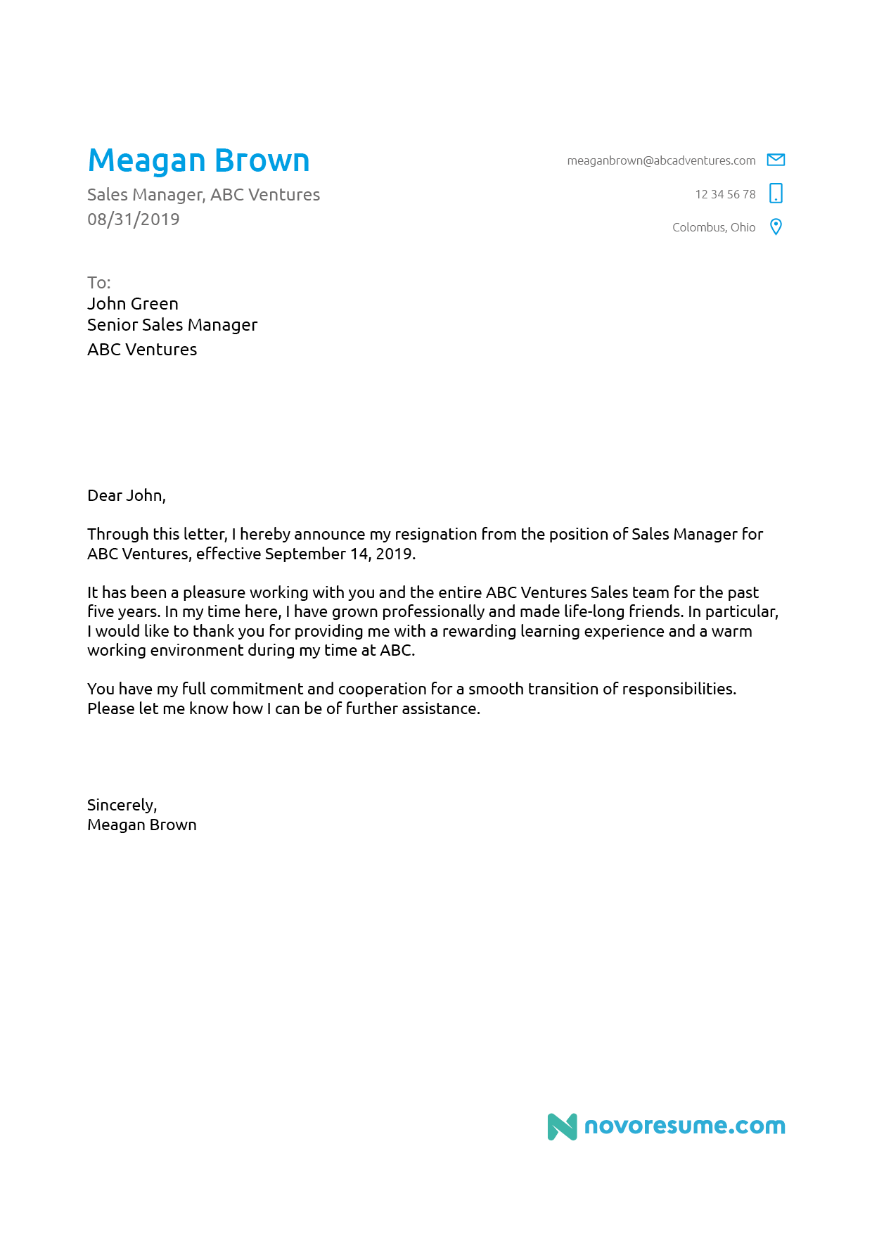 Examples Of Resignation Letter from d.novoresume.com