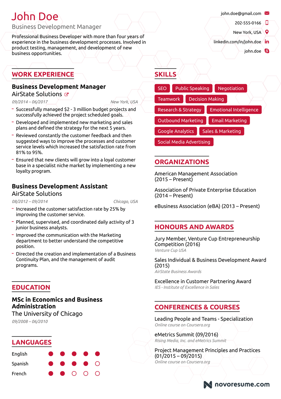 resume of business development executive