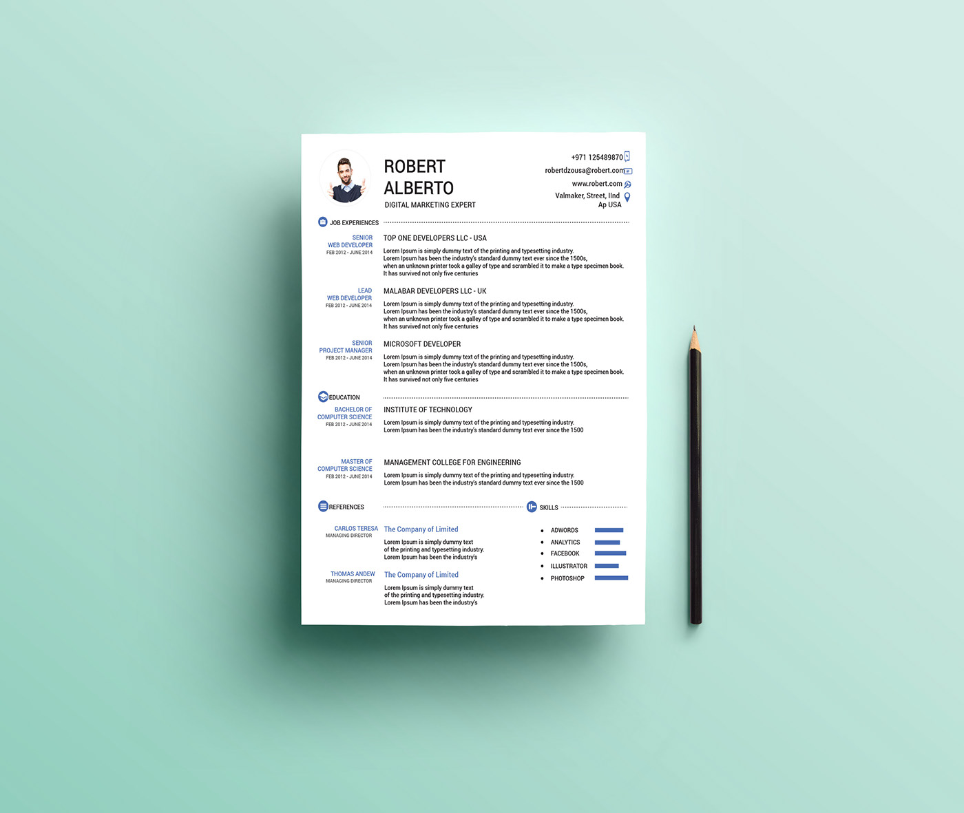 Resume Template Microsoft Word 2014 from d.novoresume.com