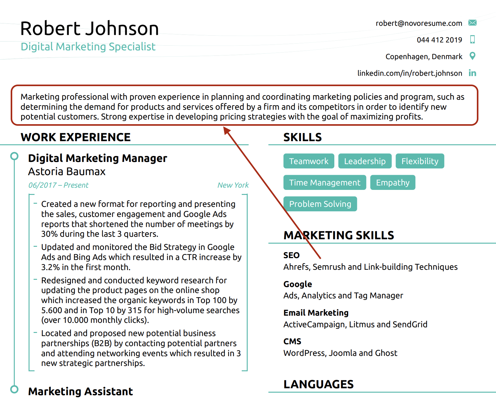 40 Resume Summary Examples How To Guide