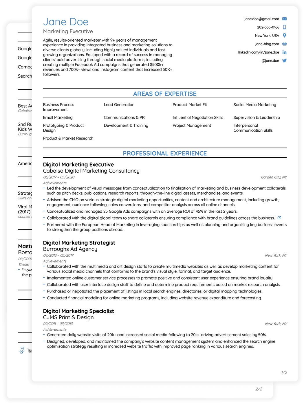 Job Resume Format | Professional Cv Templates For 2019 Edit Download