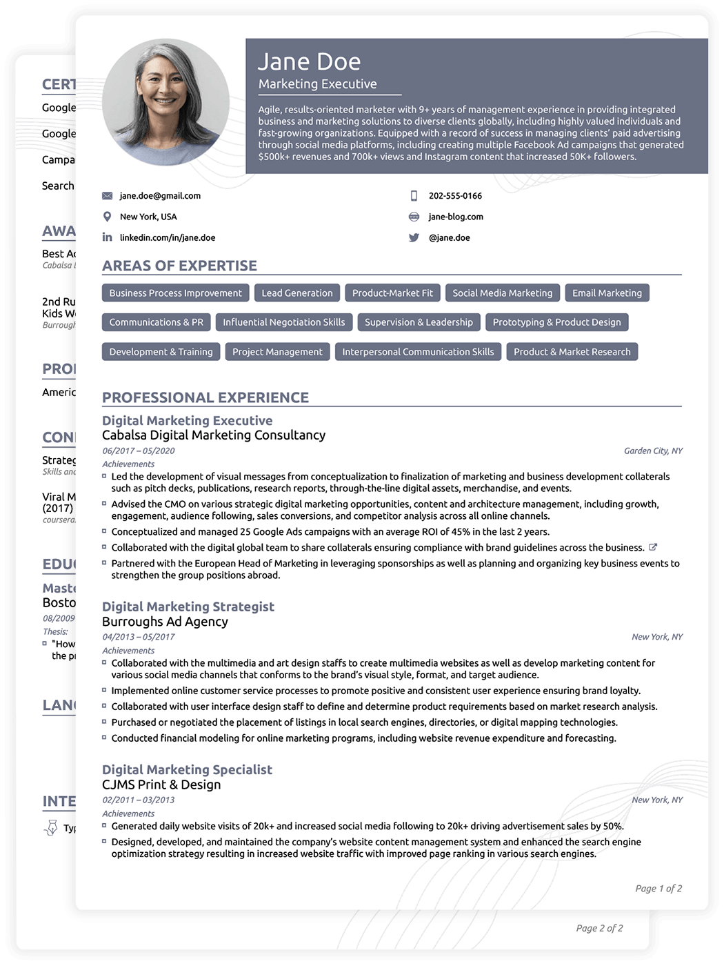 cv format professional download