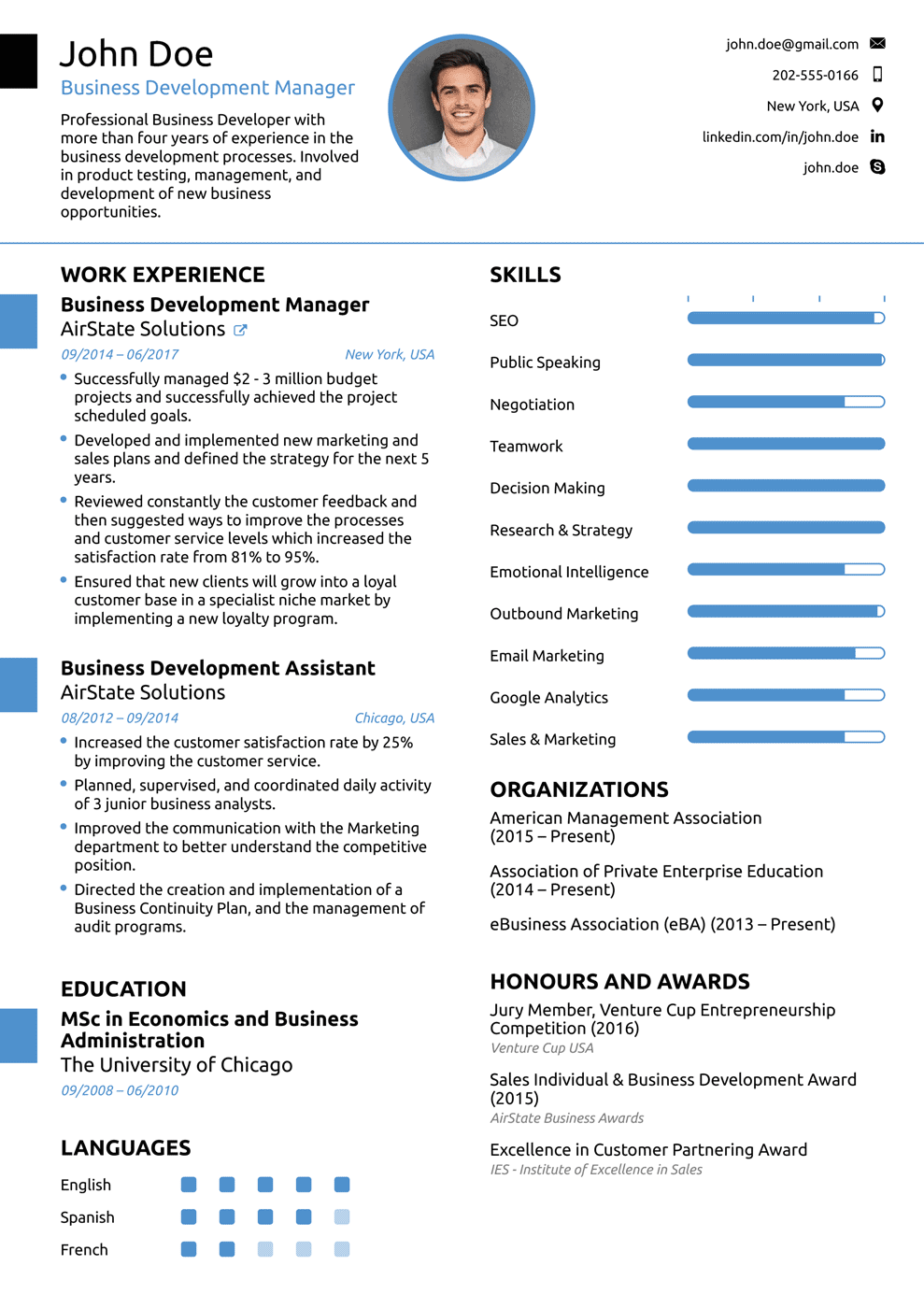 resume sample for it professional