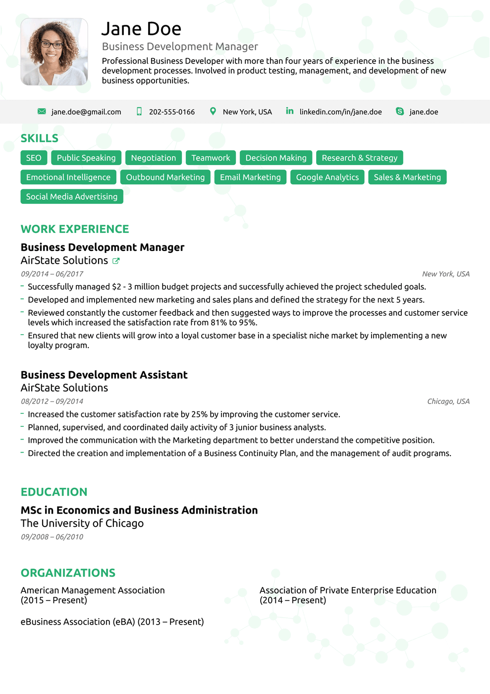 executive resume template - Professional Template For Resume