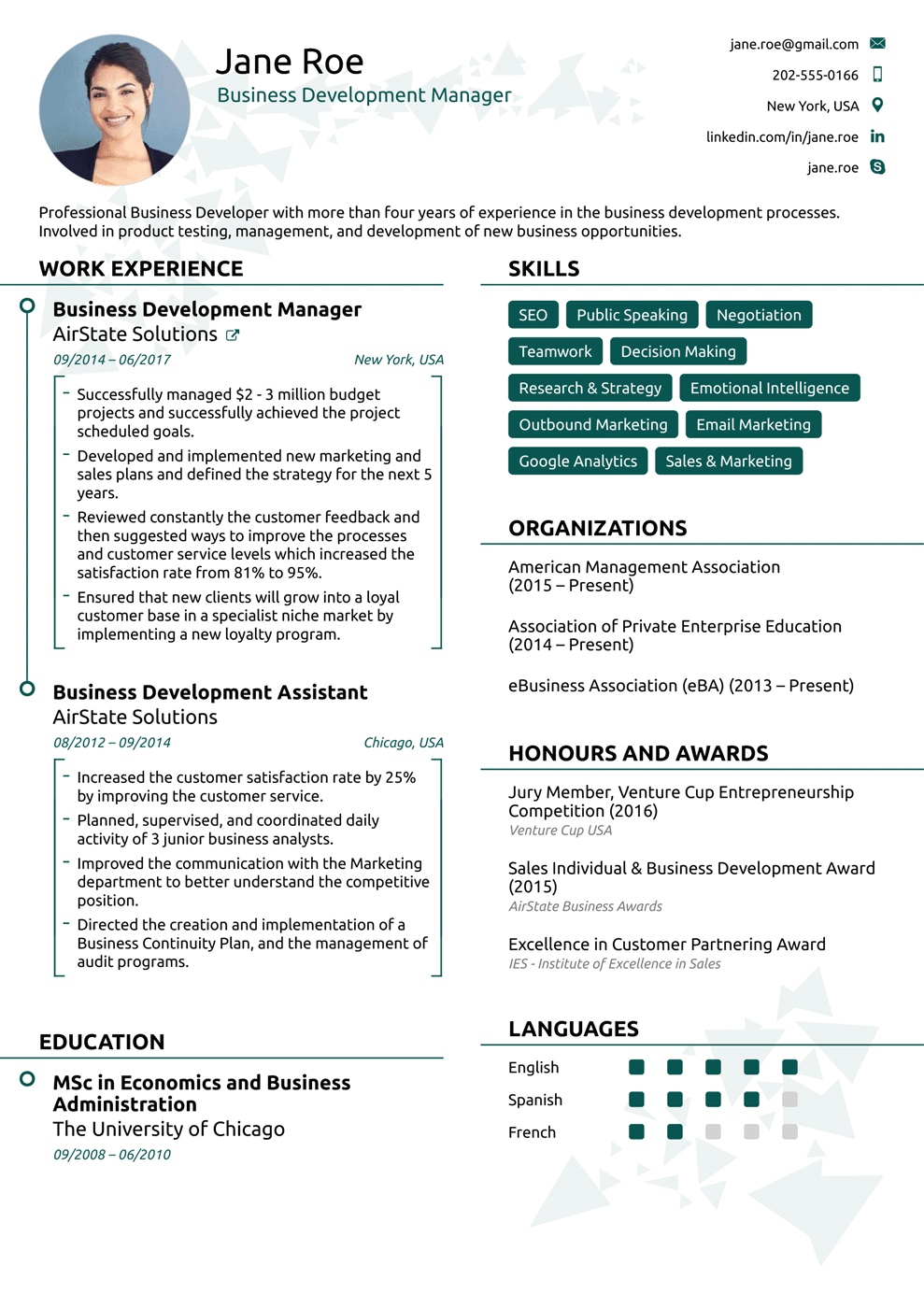 sample professional resume template commercial property