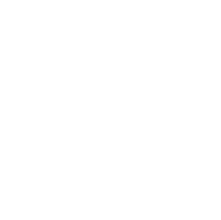 white novoresume simple logo